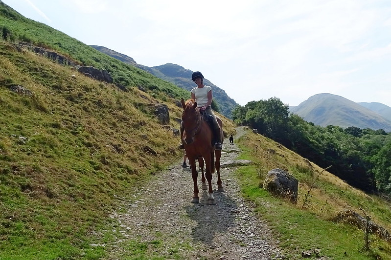 pony trekking lake district