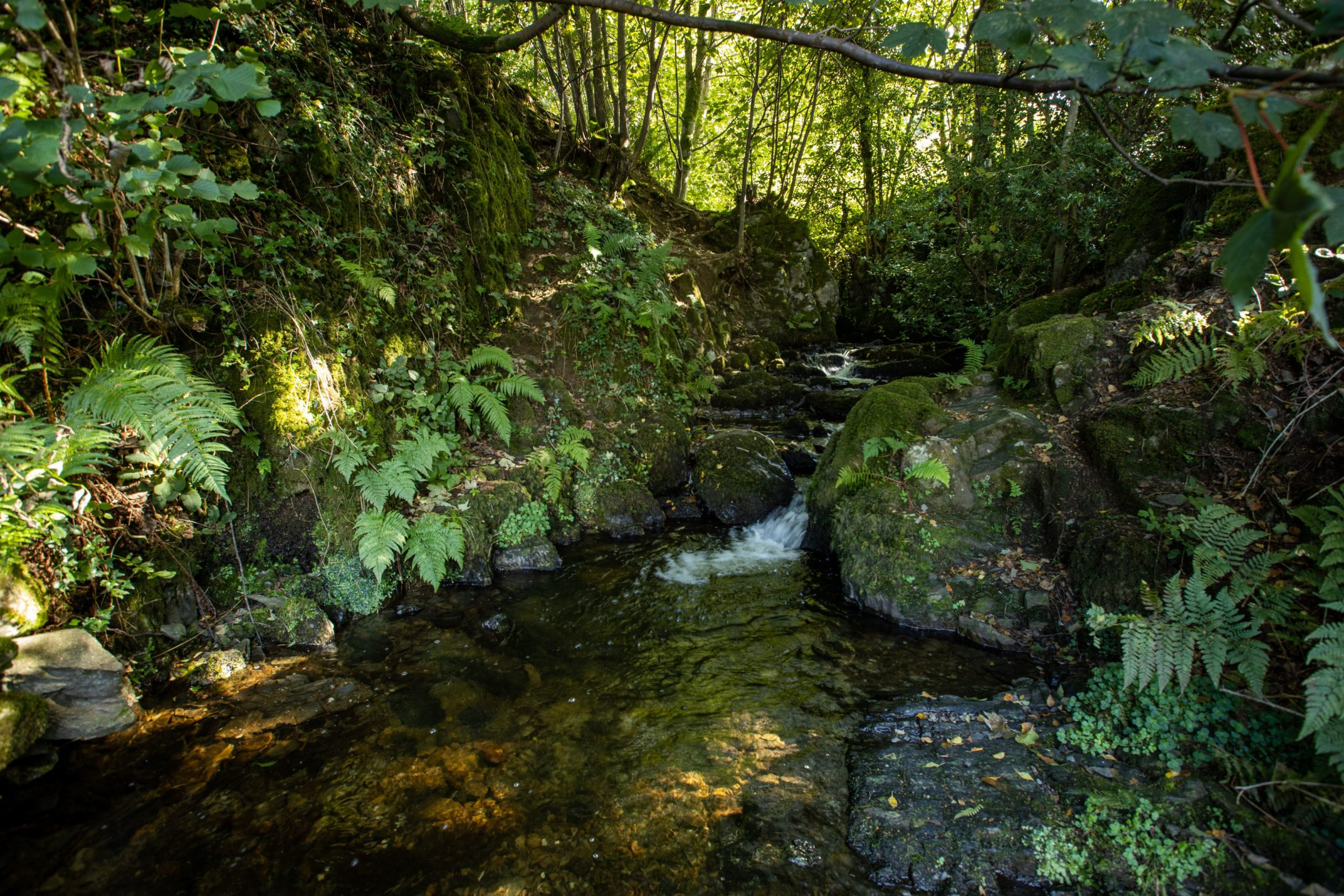 Park Cliffe Lake District Campsite Stream