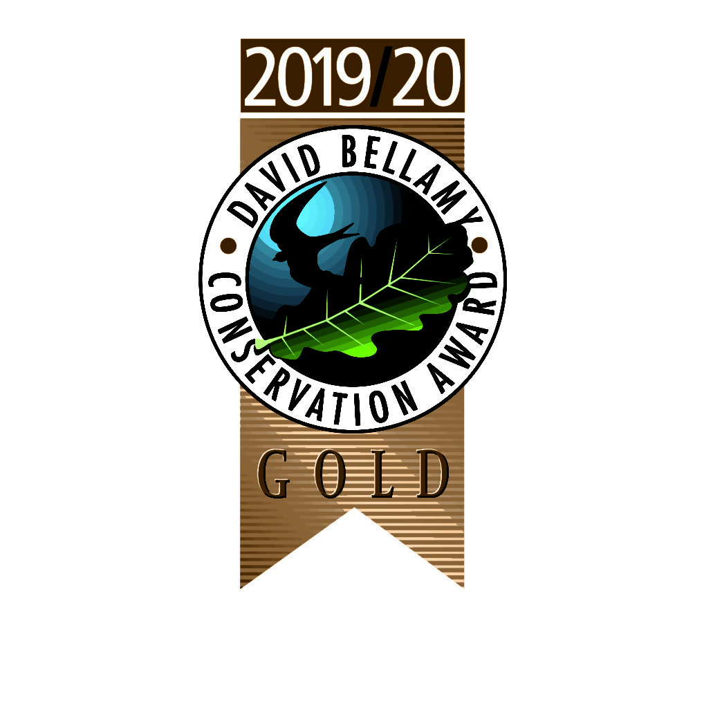 David Bellamy 2019/2020 Logo